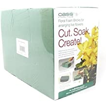 Oasis® Pack of 6 Standard Floral Foam Bricks
