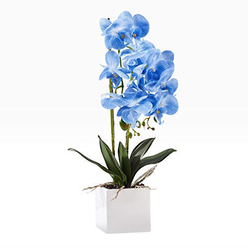 KINBEDY Aritifical Bonsai Silk Orchids Phalaenopsis with Vase Home Office Decoration Party Wedding Decor,Blue.