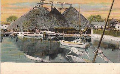 D9348 VA, Hampton Oyster Shells Postcard