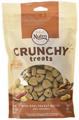 NUTRO Crunchy Natural Dog Treats with Real Peanut Butter, 10 oz. Bag