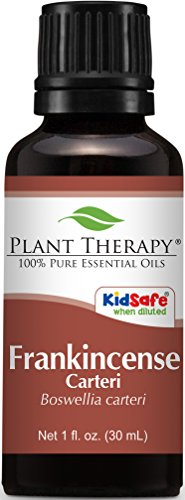 Plant Therapy Frankincense Carteri Essential Oil. 100% Pure, Undiluted, Therapeutic Grade. 30 ml (1/3 oz).