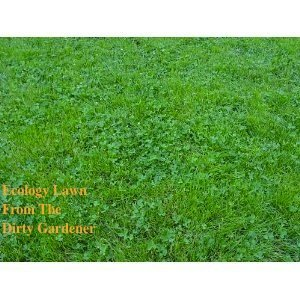 The Dirty Gardener Ecology Lawn Seed - 50 Pounds by The Dirty Gardener