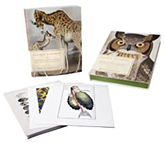 For the first time, Natural Histories allows readers a privileged glimpse of seldom-seen, fully illustrated scientific tomes from the American Museum of Natural History's Rare Book Collection. Forty essays from the museum's top experts...