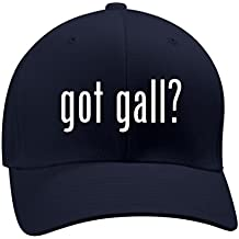 got gall? - A Nice Men's Adult Baseball Hat Cap