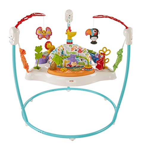 Fisher-Price Animal Activity Jumperoo (Jumpers Girls Baby For)