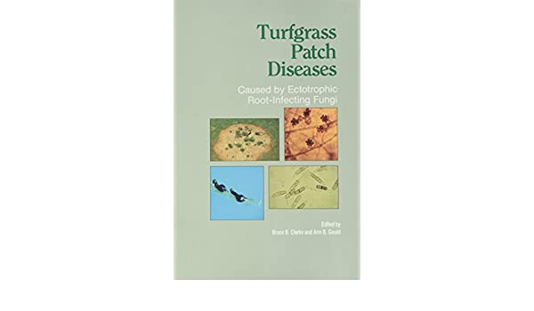Amazon com: Turfgrass Patch Diseases: Caused by Ectotrophic