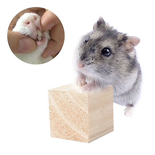 Abicial Rope Wood Blocks Hamster Chew Toy Mouse Guinea Rat Hedgehog Exercise Play Toys