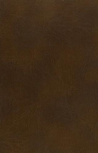 book cover of The Glimpse