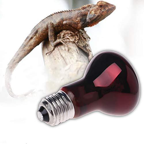 l/ámparas Infrarrojos para Reptiles y Anfibios Yanhonin Bombilla calefactora cer/ámica