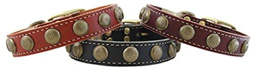 Burgundy 26 Burgundy 26 Leather Lake Country Sunburst Dog Collar 26 Burg