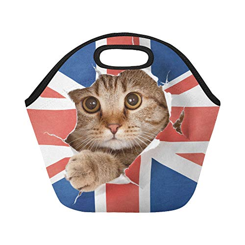 Insulated Neoprene Lunch Bag Lovely Tiny Cat With Torn Jack Union Flag Large Size Reusable Thermal Thick Lunch Tote Bags For Lunch Boxes For Outdoors,work, Office, School ()