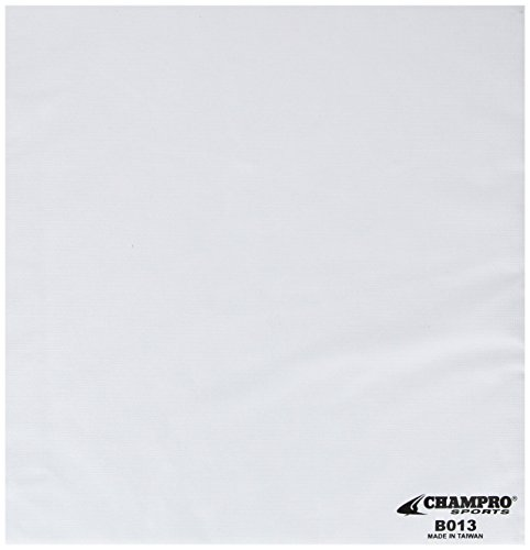 Champro Nylon Base Set (White, 14 x 1-Inch) by CHAMPRO