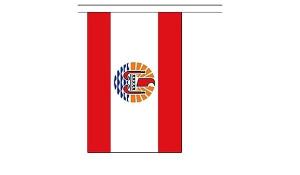 3 metros 10 (22,86 cm x 15,24 cm) de la bandera de Polinesia ...