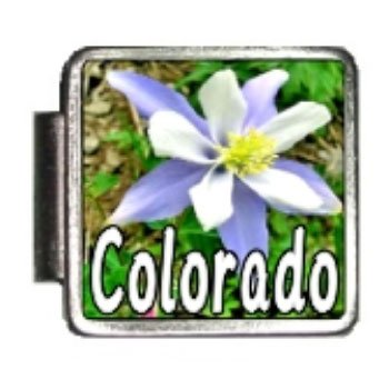 Colorado State Flower Rocky Mountain Columbine Photo Italian Charm Bracelet Link (Rockies Charm Colorado)
