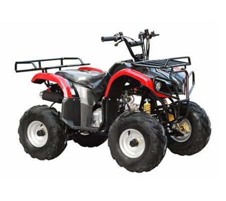 ATA-110D TaoTao Kids Gas 110cc Utility ATV - Burgundy