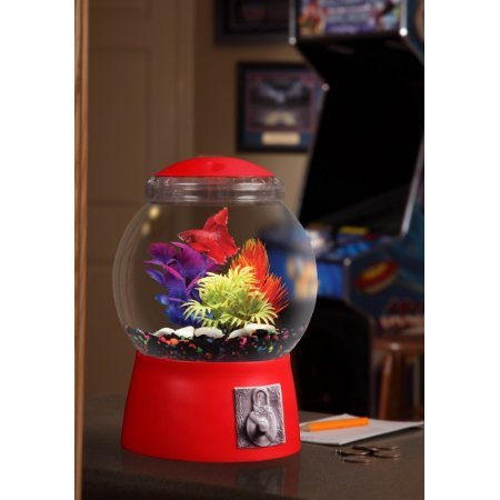 Aqua Culture 1.5-Gallon Gumball Aquarium, LED Lighting, 9'' DIA x 13'' H by Aquaculture