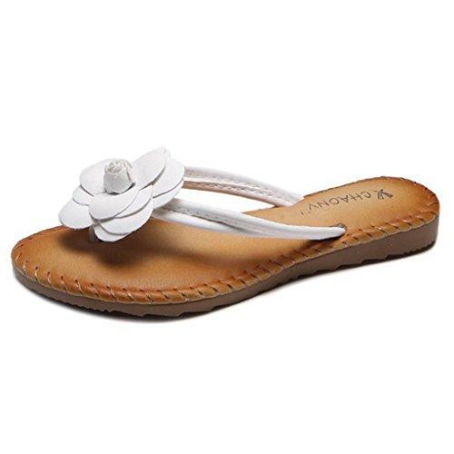 GIY Womens Flower Flip Flops Thong Sandal Summer Beach Slip on Rubber Flat Slides Slippers