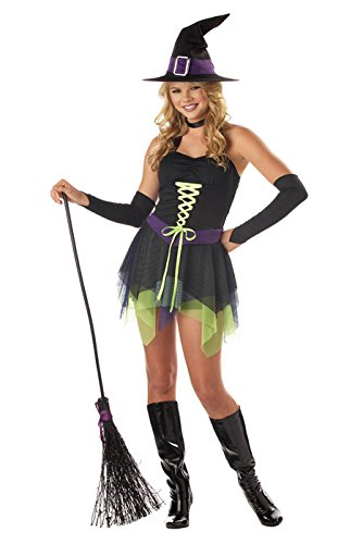 Classic Adult Costumes Deluxe Witch (California Costumes Women's Sassy Witch Costume,)
