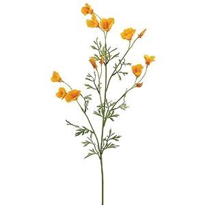 """26"""" Mini California Poppy Spray Yellow (Pack of 12) 104"""