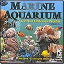 Best 3  Microsoft Aquarium Screensavers Softwares