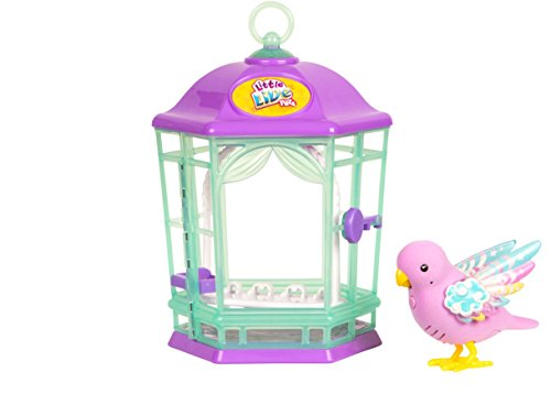41h%2Bxkq8pSL - Little Live Pets Bird with Cage-Rainbow Glow Childrens Toy