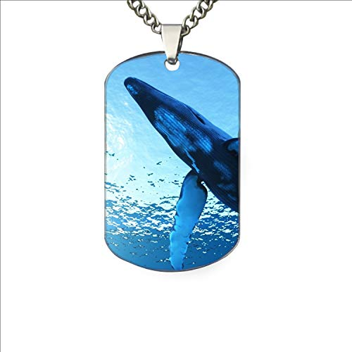 PANQJN Whale Underwater Dog Tag from Dad Mens Boys Necklace Military Chain Air Force Pendant