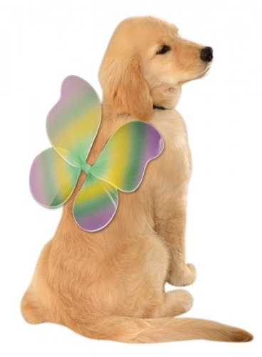 [Rubies Costume Company Mardi Gras Fairy Wings for Your Pet, Medium/Large] (Weimaraners In Costumes)