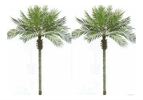 - 2 Artificial 8 Foot Phoenix Palm Trees Plant Date Pool Patio Sago Bamboo Fake 8'