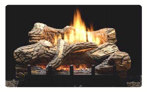 propane gas log fireplace. Amazon com  24 Propane LP Gas Manual Fireplace Log Insert Home Kitchen