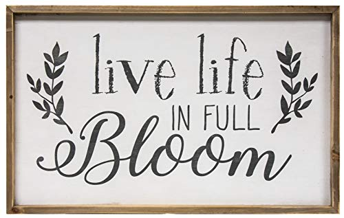 (CWI Gifts Live Life in Full Bloom Framed Wall Sign, Multi)