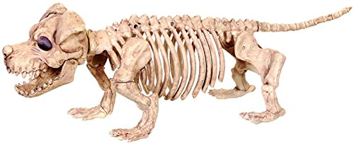 Crazy Bonez Skeleton Dog - Puppy Bonez ()