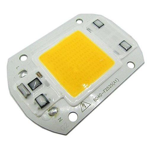 colorfulpearl Driver Free 50W LED COB Chip lamp Light Warm White 110V AC