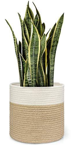 - Dahey Jute Spliced Cotton Rope Plant Basket Modern Woven Storage Basket for 10