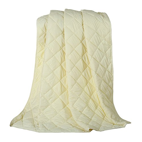 NATURETY Thin Comforter for Summer,Light Weight Bed Quilts Set (Full/Queen, Light Yellow) (Comforter Light Yellow)