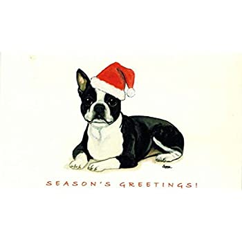 boston terrier christmas cards box of 8 cards