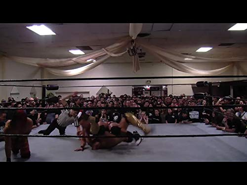 (Bar Wrestling 6: Head of Household)