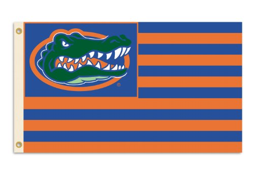 NCAA Florida Gators 3-by-5 Foot Flag Logo with Stripes with - Florida Ncaa Gators Stripes
