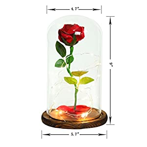 """Beauty and the Beast"" Everlasting Red Rose Flower Led Light with Fallen Petals in a Glass Dome on a Wooden Base 6"