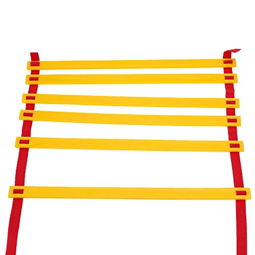 3.1M (10.17 Feet) * 6 Rungs Long Soccer Training Speed Agility Ladder + Carry Bag Outdoor Fitness Equipment Ladder