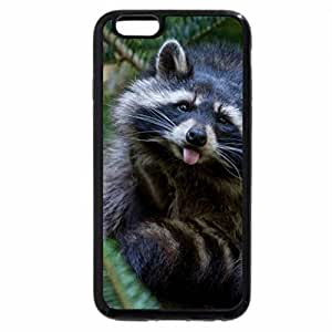 iPhone 6S Plus Case, iPhone 6 Plus Case, Cute Raccoon in Pine Tree
