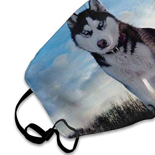 NOT Husky Huskie Dogs PM2.5 Mask, Adjustable Warm Face Mask Unique Cover Filters Blocking Pollen Pollution Germs,Can Be Washed Reusable Pollen Masks Cotton Mouth Mask for Men Women