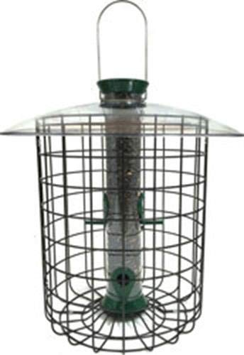 Droll Yankees Domed Cage Sunflower Seed Bird Feeder, 15 Inches, 4 Ports, Green - Cage Feeder Domed