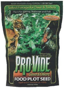 Evolved Habitat Provide Clover Food Plot with Chicory