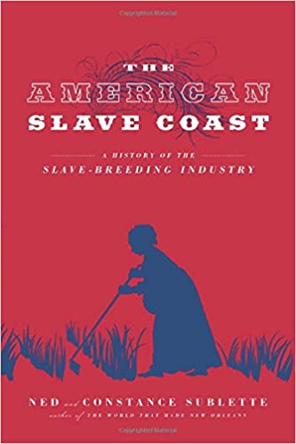 I have a tough history essay prompt on slavery. idea help?