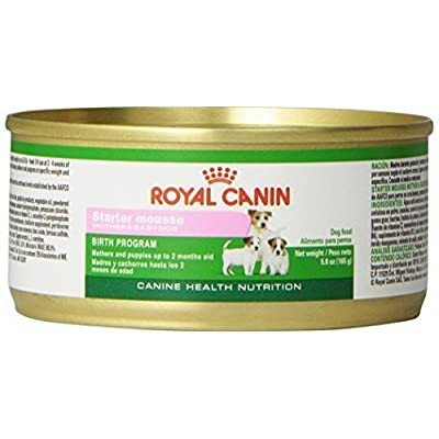 Royal Canin Starter Mousse for Mother and Baby Dog Food, 12-Can