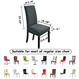 NORTHERN BROTHERS Dining Chair Covers Stretch Chair