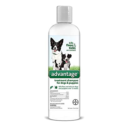 Cat Health Products Advantage Shampoo Flea and Tick Treatment [tag]