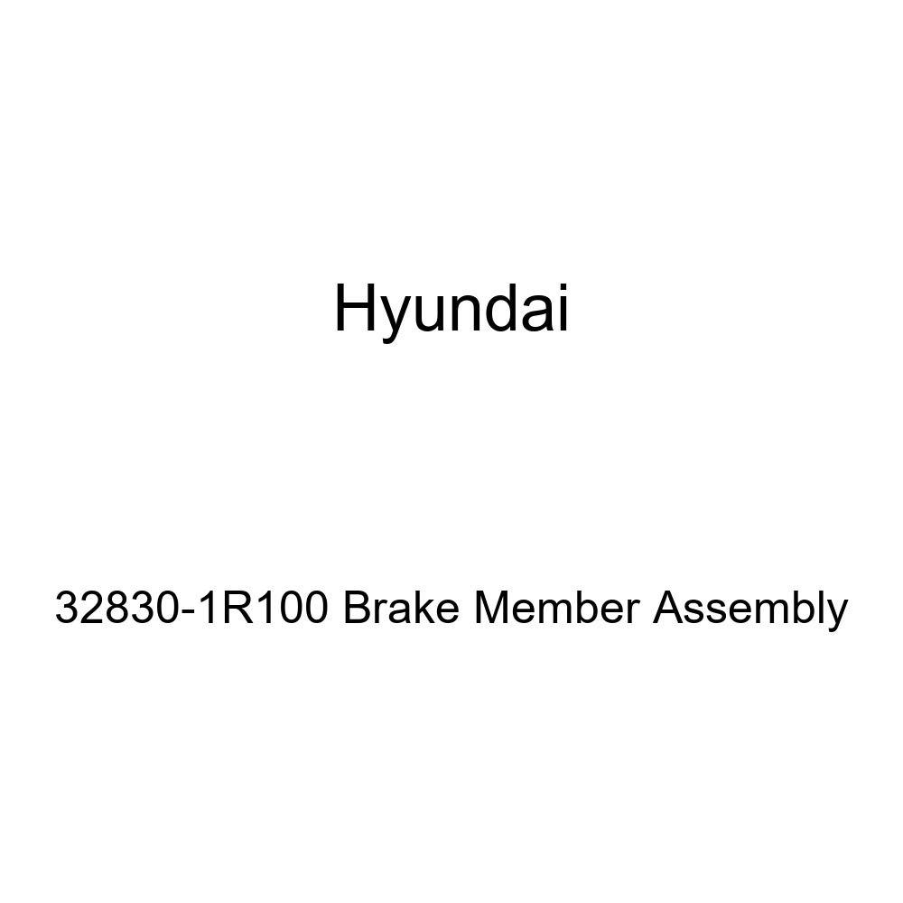 Genuine Hyundai 32830-1R100 Brake Member Assembly