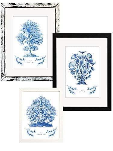 'Corales y Algas Azules' - Láminas de arte individuales (marco opcional)