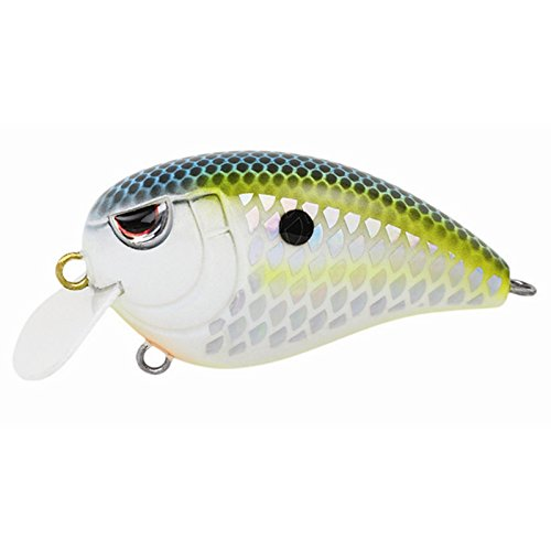 Image of Artificial Bait SPRO Fishing SFJ50CTN Fat John 50 Fishing Lures, Citrus Nasty